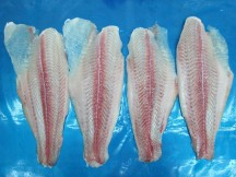 PANGASIUS FILLETS, SEMI-TRIMMED