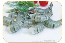 FROZEN RAW HLSO EASY PEELED BLACK TIGER PRAWN