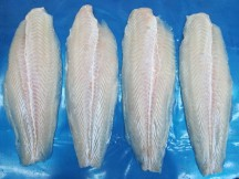 PANGASIUS FILLETS, WELL-TRIMMED