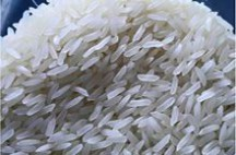 RICE OF VIETNAM